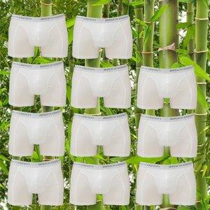 10+1 gratis Bamboe heren Boxershorts Maxx Owen Wit